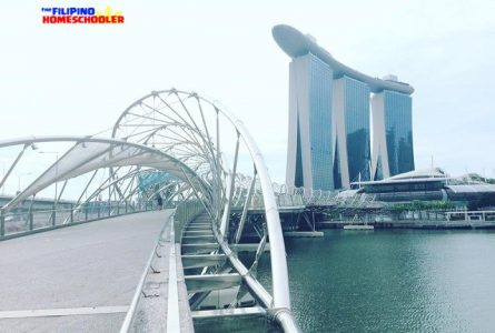 Exploring Bridges in Singapore